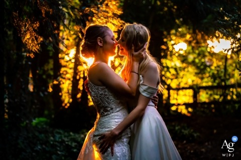 Norton Park Hotel, Hampshire, UK Bride & Bride portrait, backlit in forest