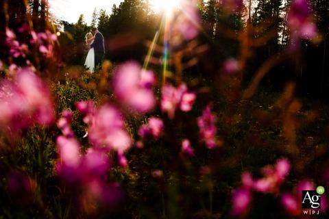 Tenmile Station, Breckenridge, CO trouwlocatie foto's | De laatste stukjes zon steken door de pijnbomen en verlichten de prachtige paarse wilde bloemen.