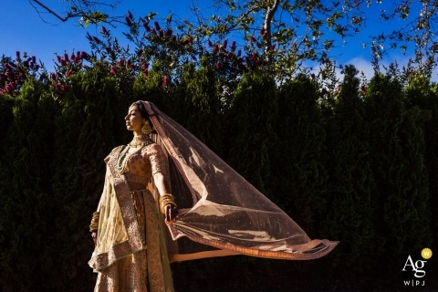 San Jose, Ca Bride poses in her wedding Sari during sunny portrait shoot