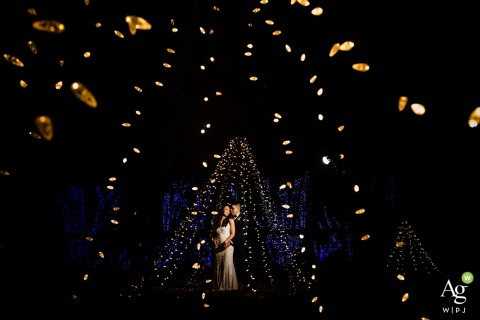 Meadowlark Botanical Gardens, Virginia wedding venue photo | Night portrait during Winter Walk of Lights
