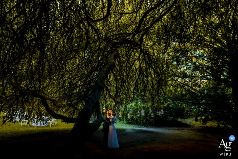 Villa Lorenzo Briosco Lecco | Wedding portrait of the couple under the big tree