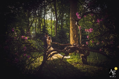 Scotland Reception Venue Portrait | Bride & groom backlit in the woods early evening.