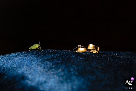 Divan Hotel Mersin Turkey | Fine art photo of the rings and a insect in the room