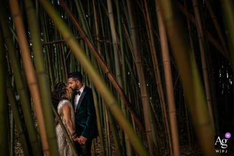 Villa Castelletti, Tuscany bride and groom creative wedding day portrait in the bamboo