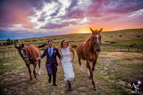 Wedding Portrait of a couple and their horses in Parker, Colorado