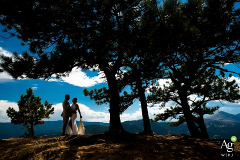 Boulder, CO artistic wedding silhouette photo of bride and groom under tree