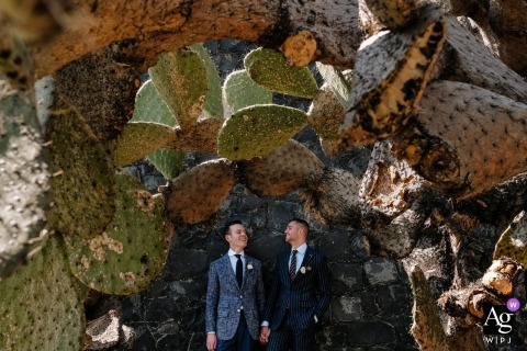 Grooms on their wedding day standing amongst cactus in San Miguel de Allende