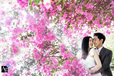 At the Bride's house, Samutprakarn, a pink couple portrait in the blooming trees