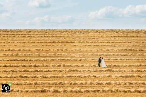 Burgundy creative wedding day portrait of A couple in a beautiful field of farm crop rows ready for harvesting