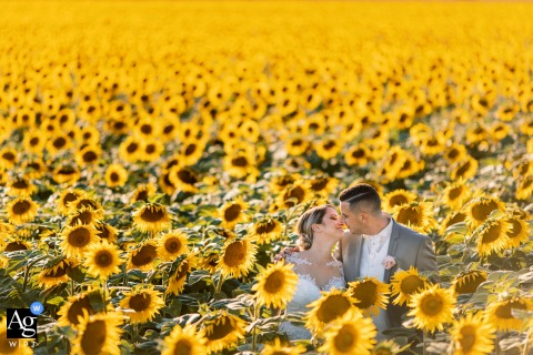 Wedding portrait of a Nice couple in a sunflower field in Provence