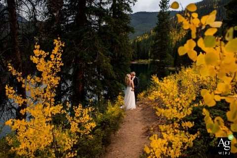 Summit County, Colorado fine art wedding portrait image of the 	bride and groom standing in aspen grove