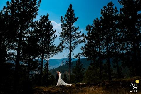 Braut- und Bräutigamporträt in den Bäumen in Boulder County, Colorado