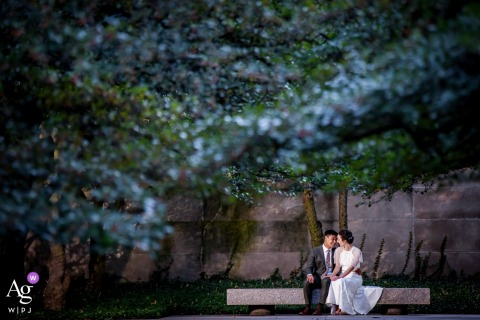 A couple wedding portrait in a city garden at the Art Institute Gardens, Chicago