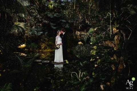 Palmengarten, Frankfurt, Alemanha retrato artístico de casal de noivos cercado por plantas tropicais exuberantes