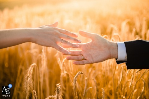 Detail image of hands with rings over a wheat field in Valladolid, Spain