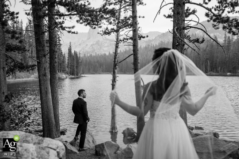 Lake Mammoth, California black and white wedding portrait of the Bride and grooms last walk