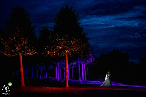 Schwetzingen creative wedding day portrait in the night between some trees and some colorful spot lighting