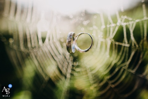 Vietnam Villa in Dalat artistic wedding photo of the rings in a spiders web