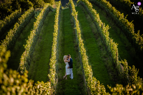 BaltimoreMaryland artistic wedding After Ceremony Portrait in the grape vines at the vinyard