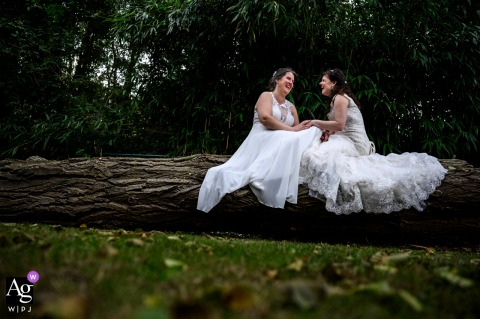Mechelen artistic wedding portrait of a couple sitting on a log in the woods