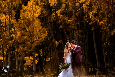 Rocky Mountain National Park, Estes Park, CO artistic wedding photo of the bride and groom kissing with fall foliage