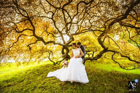 Villa Walter Fontana, LC artistic wedding photo of the couple surrounded by nature