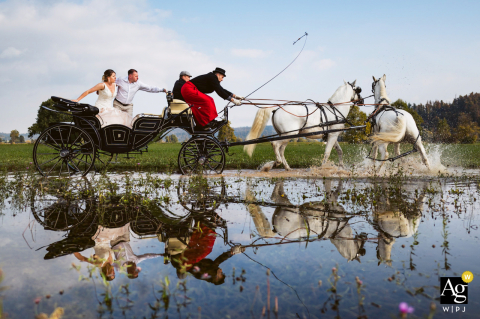 Artistic Polje Planina, Slovenia wedding photo of newlyweds on the carriage on the water surface with the reflection when one of the horses spot the reflection of themself and got scared