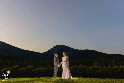 GA bride and groom posing during a portrait session at Yonah Mountain Vineyards, Cleveland, Georgia for a Late afternoon image framed against the iconic mountain