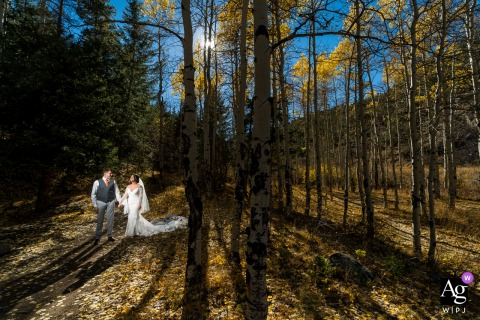 Denver, Colorado creative couple wedding portrait of the couple in the aspen trees taking a walk in the forest sunshine