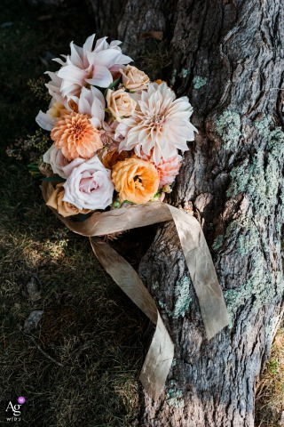 Great Sacandaga Lake in Northville, New York fine art wedding detail pic of A beautiful bouquet laid against grass and a tree root, it's ribbons draping over the root