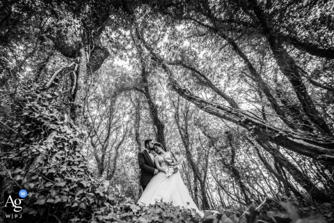 Burgas, Black sea, Utopia Forest fine art wedding portrait of the Bride and groom under huge trees