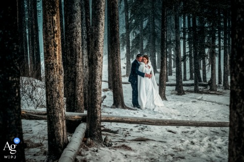 Canmore, AB, Canada fine art wedding couple portrait of the bride and groom holding each other in the forest during the winter storm