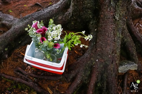 Creative wedding detail image from Blue Ridge Mountains, NC  of flowers waiting in cooler
