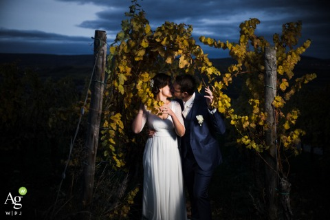 Bas-Rhin wedding couple posed portrait session of the newlyweds kissing in a vineyard