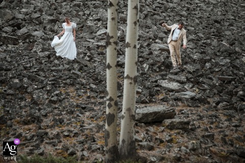 Rock Creek, Montana creative lone trees and stones wedding image