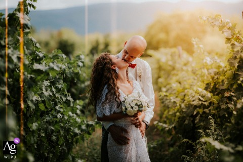 Esterra Vini, Bulgaria sunlight kissing wedding portrait with a kiss in the middle of the vineyards
