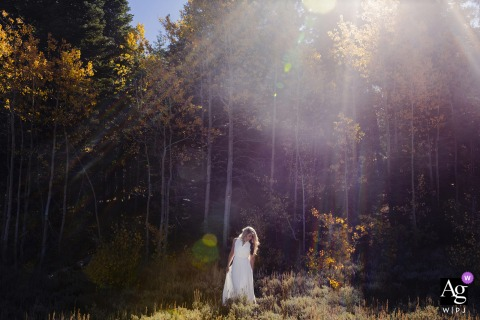 Tahoe artistic wedding photo of a lake tahoe	bride walking in the sunlit forest