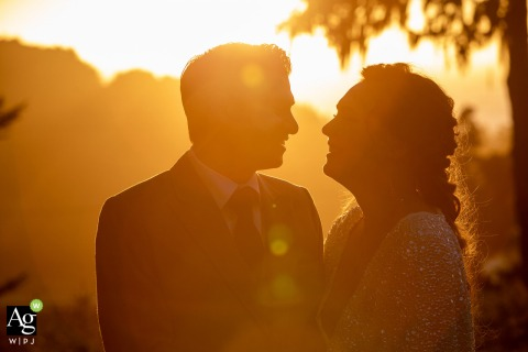 Brewery Gulch Inn, Mendocino, CA wedding couple posed portrait session in a glowing sunset light