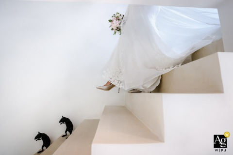 Zurich artful style wedding detail picture of the bride descending stairs with silhouettes of rats descending alongside
