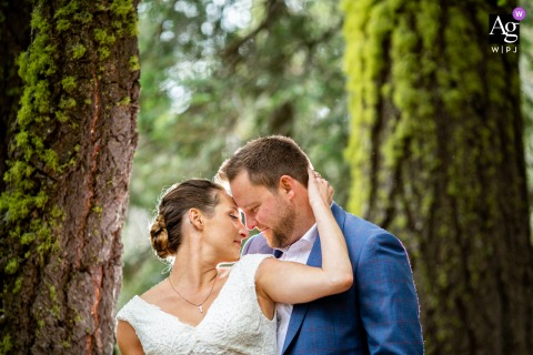 West Lake Tahoe, CA wedding couple artistic image session of the newlyweds in the woods, backlit, in-between framing trees