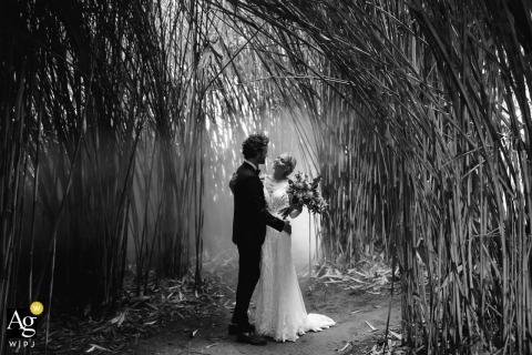 Isola di Brissago wedding couple artistic image session in the trees