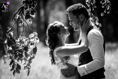Liesbosch, Breda artistic image session for a Wedding couple photo shoot, with beautiful backlight