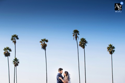 San Diego, California wedding couple artistic image session for the Bride and Groom with palm trees