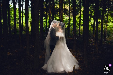 Fujian wedding couple artistic image session illustrating The woods in the park are very beautiful