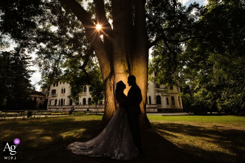 Sofia wedding couple artistic image session in Bulgaria with a light and a big tree