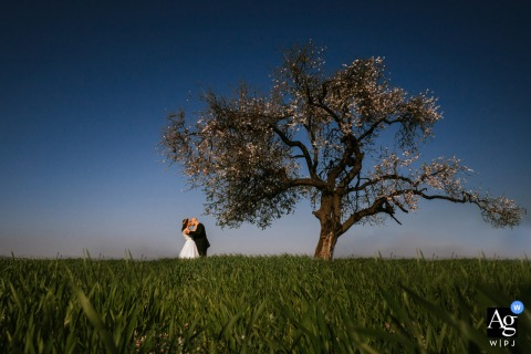 Bodrum, Turkey wedding couple artistic image session with a Couple kissing under a tree