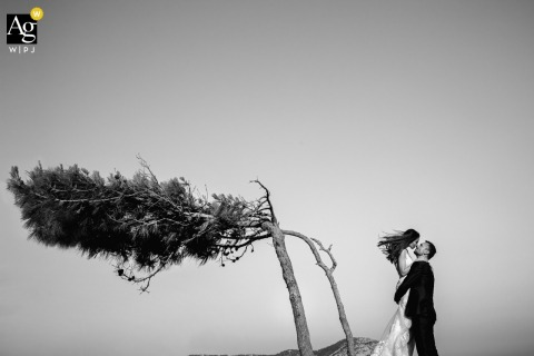 Bodrum, Turkey wedding artistic image session with a Couple posing with a strange tree