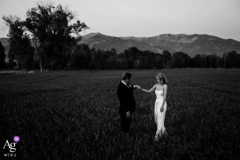 Belgrado, MT, sessione di immagini artistiche di sposi in BW con la sposa e lo sposo che si tengono per mano in campo aperto