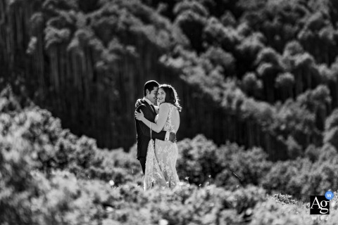Aspen, Colorado wedding couple artistic image session in BW surrounded by vegetation