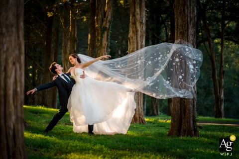 View thisgraceful Poplar Springs Manor wedding pic using a romantic ballet pose in the trees, which was a featured pictureamong the best wedding photography in Warrenton, VA from the WPJA